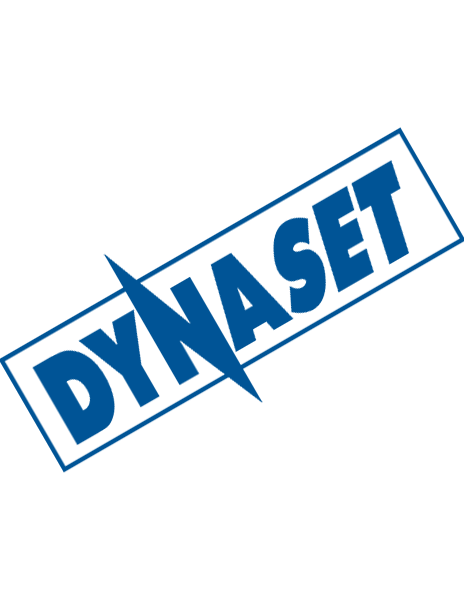DYNASET Sales Team